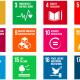 The UN Shifts from 8 MDGS to 17 SDGs: Now What?